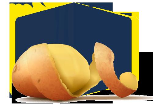 صنایع تبدیلی کشاورزی، فرآورده های سیب زمینی