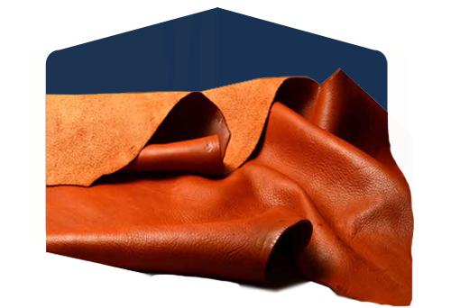 Crust, salambore and leather transforming industry